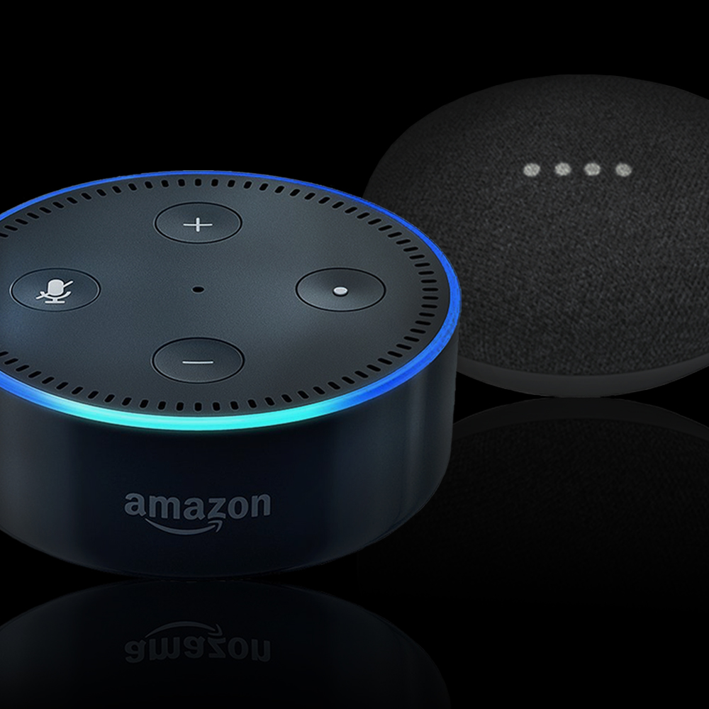 Amazon Echo Compatible